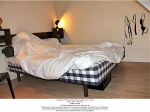Alexander minor artward for Designhotel niederlande